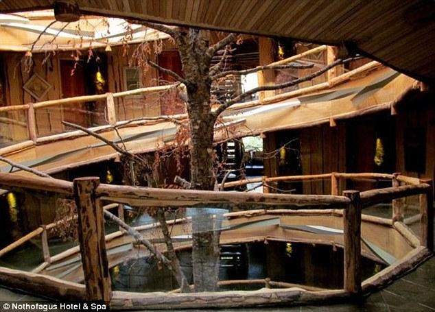 Khách sạn Nothofagus Hotel & Spa ở Panguipulli, Chile có đến 7 tầng và 55 phòng cho du khách cái nhìn toàn cảnh về Patagonian Andes. Khách sạn bảy tầng này xây dựng xung quanh một cây sồi với cầu thang hình tròn độc đáo.