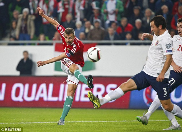 Hungary có bàn mở tỷ số ở ngay phút thư 14 do công của Tamas Priskin