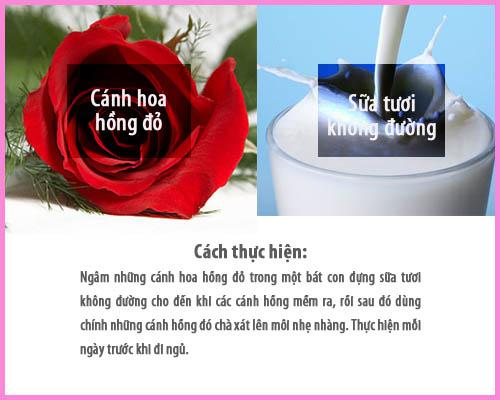 Hoa hồng và sữa tươi sẽ loại bỏ những tế bào chết, đồng thời bổ sung độ ẩm và làm sáng đôi môi.