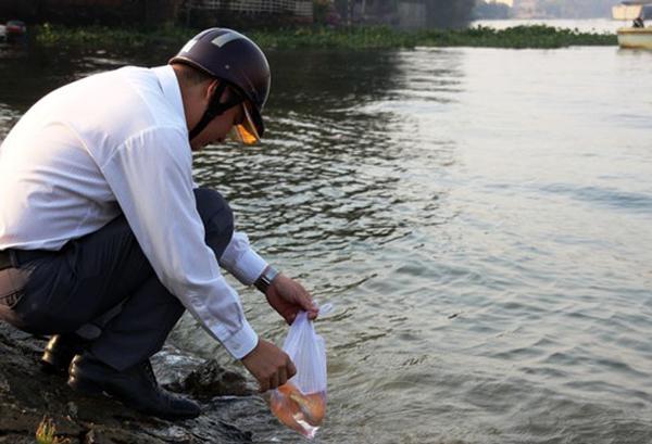 Có người tranh thủ thả cá trên đường đi làm (ảnh: Người Lao Động)