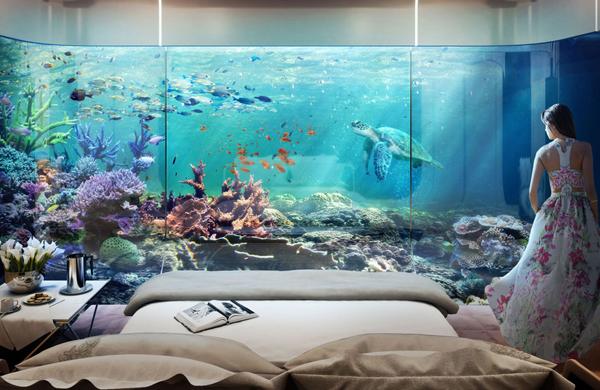 Phòng ngủ chìm dưới nước với những rặng san hô bao quanh.