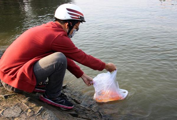 Phần lớn người dân đi thả cá vẫn sử dụng túi nilon (ảnh: Người Lao Động)