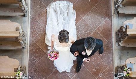 """""""Cô dâu đến rồi""""."""