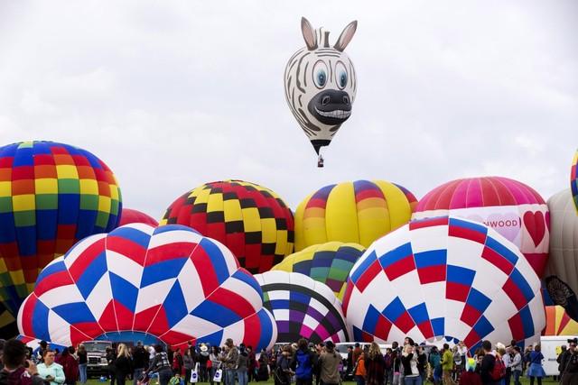 Nhiều loại khinh khí cầu có hình dáng độc đáo, lạ mắt.