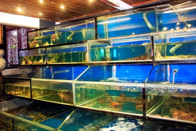 Sự kết hợp đồng điệu giữa Rừng và biển làm nên thương hiệu Sesan danh tiếng, bởi bên trái là thác nước, bên phải là bể hải sản với đủ loại cá tôm quý hiếm đang bơi lượn (Ảnh: Trí Thức Trẻ)