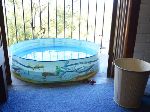 Vào mùa hè, đây sẽ là nơi để tạo nên bể bơi xinh xắn cho trẻ nhỏ.