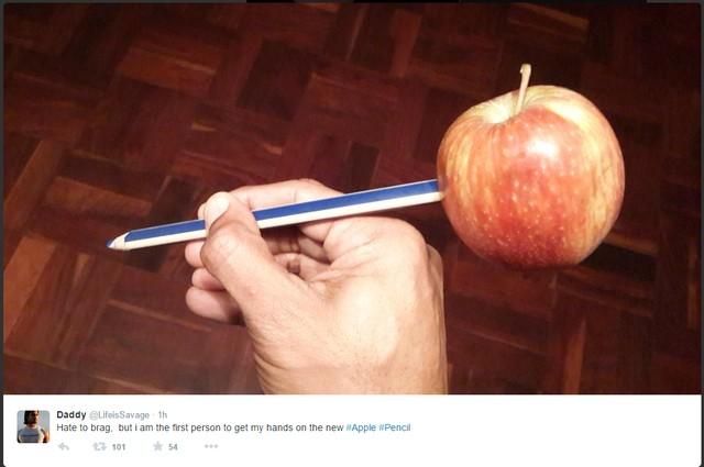 Hình ảnh chiếc Apple Pencil tự chế của người dùng