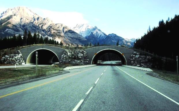 Công viên quốc gia Banff, Alberta, Canada.