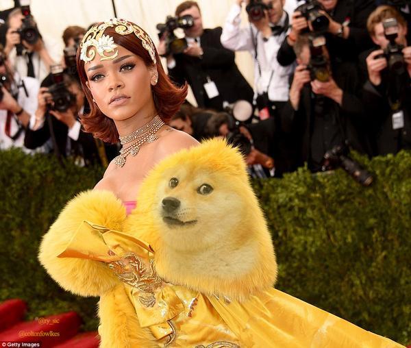 Các cư dân mạng cũng không buông tha phần thân trên của bộ váy khi ví nó giống một biểu tượng meme đình đám trên mạng (Doge the Dog).