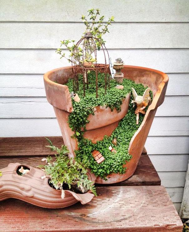 Chậu cây bị vỡ trở thành một khu vườn nhỏ xinh.