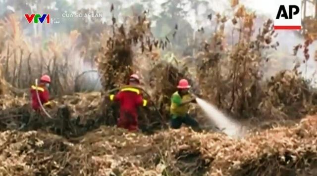 Biến đổi khí hậu là một trong những nguyên nhân dẫn đến những vụ cháy rừng lớn tại Indonesia.