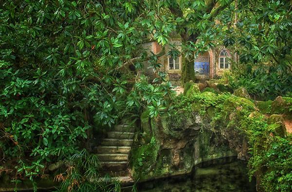 Xung quanh cung điện còn được phủ xanh với cây cối và rong rêu.
