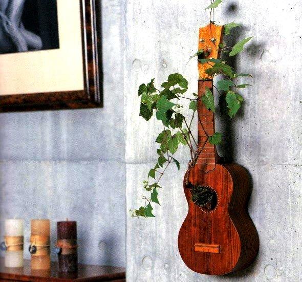 Trồng cây cảnh trên cây đàn guitar