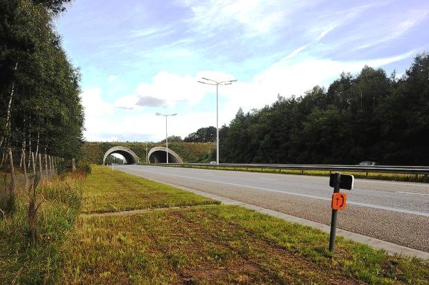 Đại lộ E314, Bỉ.