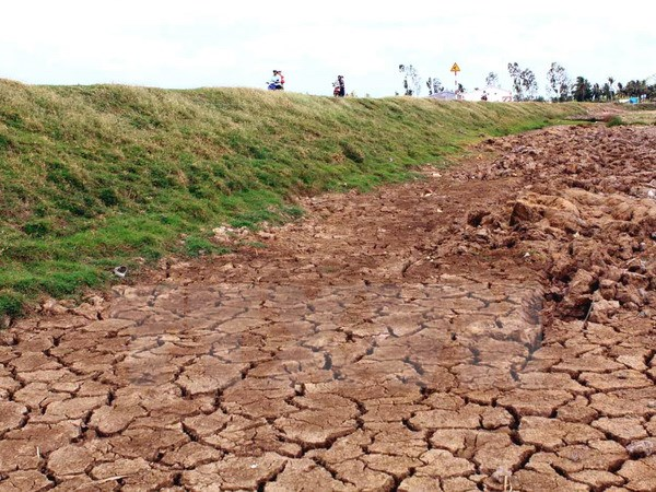 Hạn hán ở Ninh Thuận gây ảnh hưởng đến đời sống người dân (ảnh: TTXVN)