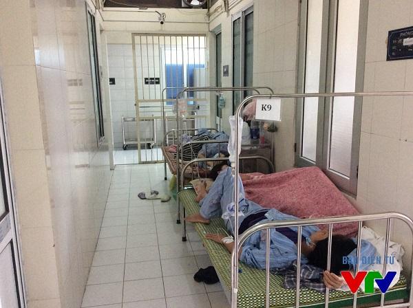 Số bệnh nhân điều trị sốt xuất huyết ở các bệnh viện Trung ương đều đang ở mức quá tải.
