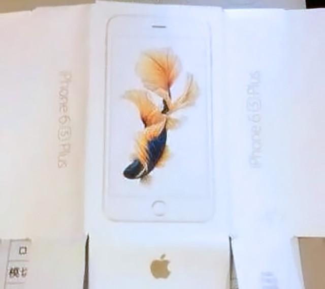 HÌnh ảnh thực tế vỏ hộp của chiếc iPhone 6S Plus