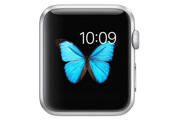 Apple Watch là sản phẩm duy nhất của Apple được trang bị màn hình AMOLED tính đến thời điểm hiện tại.