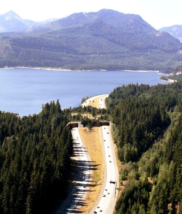 Hồ Keechelus, Washington, Mỹ.