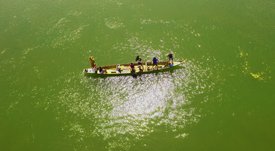 Tác phẩm Lênh đênh với nghề biển của tác giả Tạ Quỳnh Tư (Ban TH Đối ngoại)