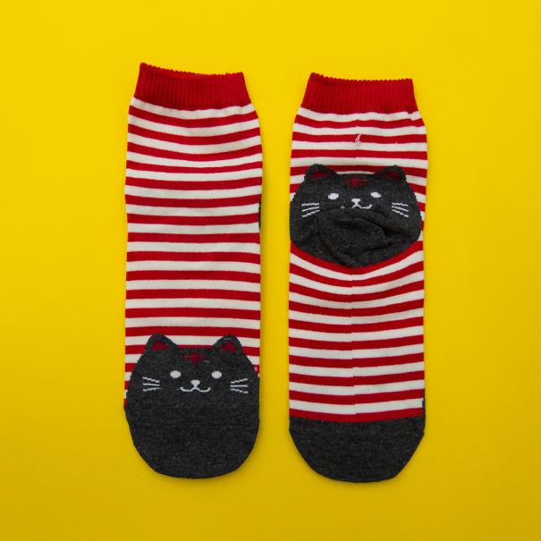 Mùa đông chắc chắn không thể thiếu cả những đôi tất có hình mèo dễ thương thế này