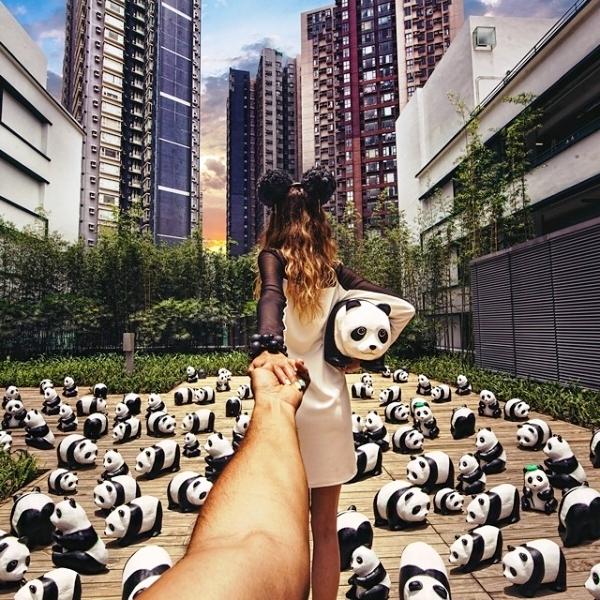 Triển lãm gấu trúc, Hongkong