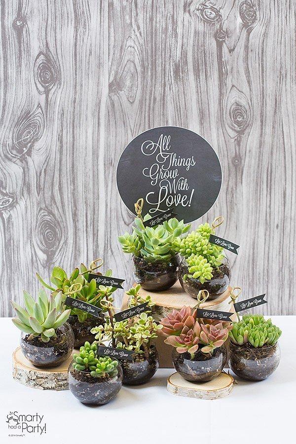 Những chậu cây xinh do chính tay bạn trồng và trang trí.