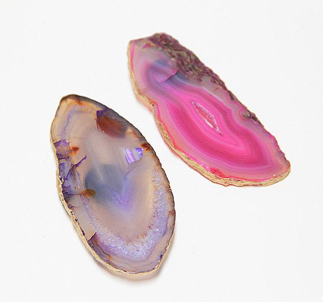 Vỏ sò được sơn màu trở thành vật chặn giấy hay vật trang trí độc đáo.