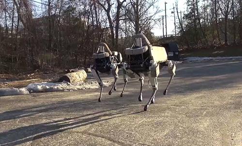 Spot là tên của chó robot do công ty Boston Dynamics chế tạo. Nó có thể chạy băng qua nhiều loại địa hình, leo cầu thang và giữ thăng bằng khi bị đá vào bên sườn. Spot sử dụng hệ thống điện/thủy lực, hoạt động được cả trong nhà