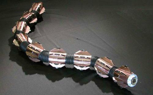 Robot rắn ACM-R5H do các nhà khoa học Nhật Bản chế tạo, ứng dụng trong hoạt động tìm kiếm dưới nước. Bộ phận phía trước mặt robot có một camera không dây để chụp ảnh