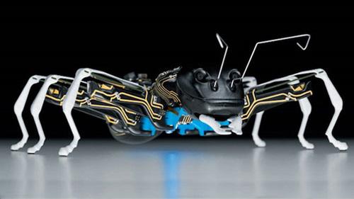 Một trong những chế tạo mới nhất của Công ty công nghệ Festo (Đức) là robot kiến làm bằng kỹ thuật sinh học (BionicAnt). Đây là những robot nhỏ, cùng làm việc với nhau để hoàn thành nhiệm vụ, tương tự cách thức các loài côn trùng cùng làm việc