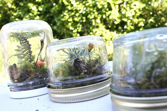 Hay biến thành nơi trồng cây thú vị.