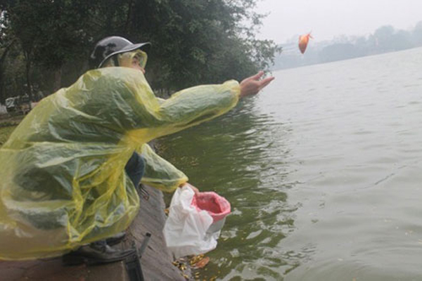 Có người phải lùng bùng áo mưa để thả (ảnh: báo Công Lý)