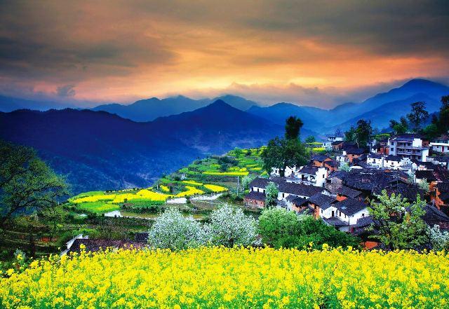 Làng Wuyuan ở Giang Tây, Trung Quốc nổi tiếng với những ngôi nhà cổ có kiến trúc độc đáo chen lẫn trong sắc hoa cải rực rỡ. (Ảnh: blog.liveitchina.com)