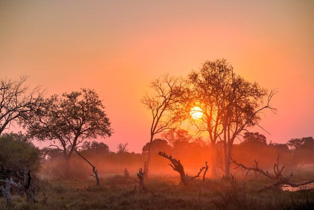 Năm 2016, Botswana kỷ niệm 50 năm ngày độc lập, nhưng không chỉ có thế, đất nước này đẹp tuyệt vời với đồng bằng, sa mạc và công viên quốc gia rộng đến 17% diện tích lãnh thổ của nó.