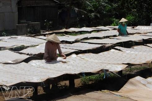 Phơi bánh phồng là một hình ảnh đặc trưng của làng nghề bánh phồng Sơn Đốc.