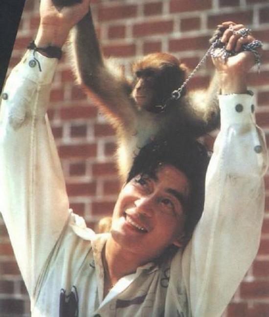 Theo Sina, mới đây, trợ lý cũ của Lục Tiểu Linh Đồng đã chia sẻ ảnh thời thanh xuân của tài tử bên những chú khỉ nhân dịp đầu xuân. Trợ lý tiết lộ: Năm xưa ông ấy đã là một người đam mê văn hóa Mỹ hầu của Trung Hoa.