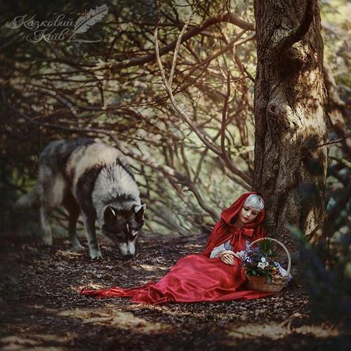 Cô bé quàng khăn đỏ.