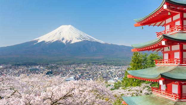 Chính phủ Nhật Bản đang cố gắng để giảm đồng yên, tạo ra chi phí hợp lý hơn bao giờ hết. Là thành phố chủ nhà của thế vận hội Olympic và Paralympic 2020 nên chắc chắn Tokyo sẽ không làm bạn thất vọng.