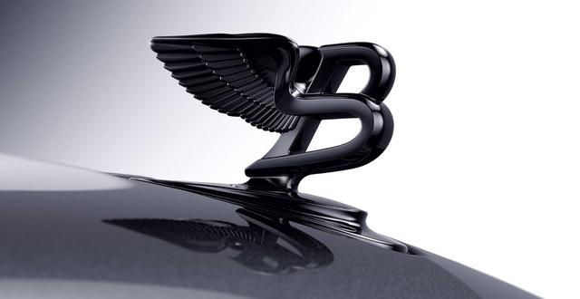 Biểu tượng sang trọng của chiếc xe.