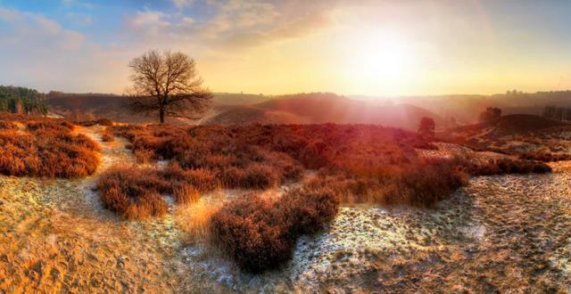 Và vẻ đẹp kì ảo của vùng quê vào những buổi sáng sớm