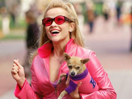 """Tác phẩm điện ảnh hài lãng mạn """"Luật sư không bằng cấp"""" của người đẹp Reese Witherspoon sẽ chính thức bước sang tuổi 15 vào tháng 7 hè này. Dù đã ra mắt từ năm 2001, những thông điệp về tình yêu và nữ quyền trong phim vẫn không hề bị lỗi thời."""