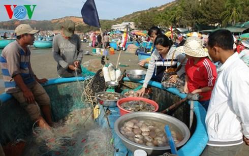 Du khách mua hải sản tươi sống vừa đánh bắt tại biển Hòn Rơm - Mũi Né