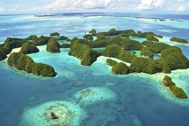 Với những nỗ lực bảo tồn, Palau xứng đáng được dành một vị trí trong những nơi phải đến mùa hè này. Đây là một trong những nơi để bơi và lặn biển tuyệt nhất thế giới.