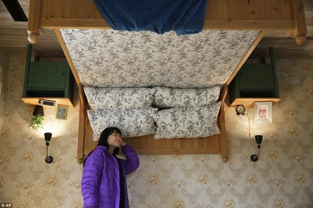 Giường ngủ ấm áp treo lơ lửng trên cao