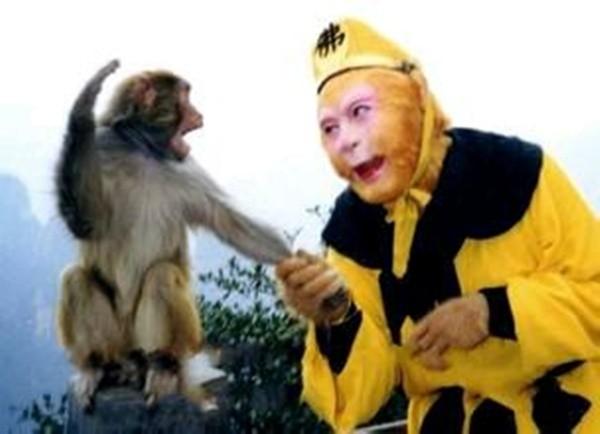 Tôi nhận lời cho Lục Tiểu Linh Đồng thử vai sau khi cha cậu ấy - tiền bối Lục Linh Đồng đề cử. Không ngờ, quyết định năm xưa lại là điều khiến tôi tâm đắc nhất. Lục Tiểu Linh Đồng thể hiện thành công vai diễn Tôn Ngộ Không như thể đó là một phần con người cậu ấy - Dương Khiết nói. Nam nghệ sĩ gạo cội cho biết, khi đóng phim ông đã tự biến mình thành khỉ.