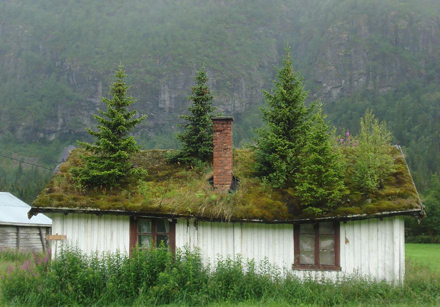 Một ngôi nhà nữa ở Na uy