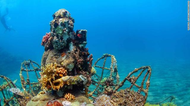 Pemuteran thuộc đảo Bali của Indonesia với điểm lặn ngắm rạng san hô mọc kín quanh những bức tượng Phật dưới nước. Du khách cũng có thể nghỉ dưỡng bên bờ biển, tận hưởng vẻ đẹp tuyệt diệu của thiên nhiên.