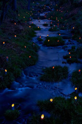 Người Nhật Bản muốn lưu giữ những truyền thống về cây tre và trồng lúa của mình qua việc tổ chức lễ hội ánh sáng tre ở Taketa, Ōita. Sự kiện này bắt đầu vào năm 2000 thu hút du khách từ khắp nơi trên thế giới – những người tới đây để chiêm ngưỡng 20.000 chiếc đèn lồng thắp sáng trong 3 đêm. Lễ hội này bắt đầu từ thứ Sáu thứ ba của tháng 11.