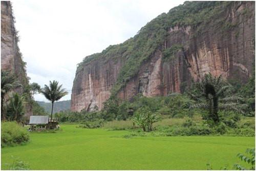 Thung lũng Harau nằm ở tây Sumatra ở Indonesia, thung lũng Harau là một trong những kì quan thiên nhiên đẹp nhất với những ngọn núi, những vách đá, những khu rừng và cả những cánh đồng lúa. Bạn có thể đi bộ để ngắm thung lũng hoặc ở homestay một nhà gần thung lũng để thuận tiện hơn.